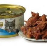 Brit Care Cat Tonijn & kalkoen 80 g