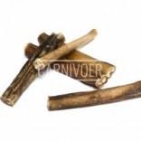 Carnivoer runderstenge 12 cm 5 stuks
